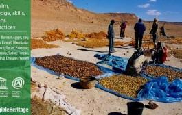 Palma da dattero e le sue tradizioni patrimoni Unesco